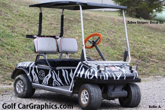 Zebra-kit-2