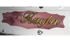 custom-golfcart-graphic-73-palm-photo-vinyl-1