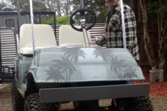 golfcar-wrap-209-moon-palm-grey-3