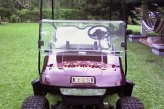 golfcart-design-photo-21-backdraft-5